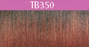Color Type TB350.jpg
